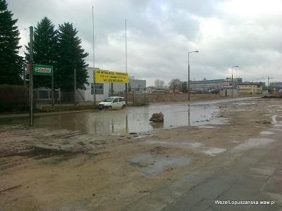 2012.04.02 - Węzeł Łopuszańska Warszawa - jeziorko powstałe na drodze wzdłuż Łopuszańskiej