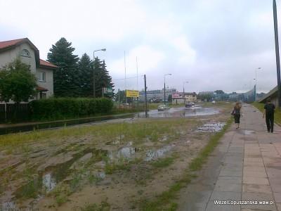 2012.07.02 - Węzeł Łopuszańska Warszawa - jeziorko na ulicy Pryzmaty